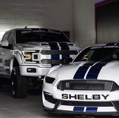Mustang Cars, Ford Mustang, Shelby Mustang, Shelby Gt 500, Upcoming Cars, Ford Pickup Trucks, Sexy Cars, Amazing Cars, Luxury Cars