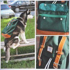 LAYKA / рюкзаки, сумки, аксессуары /