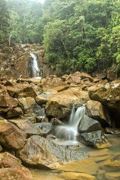 El Vigia, Chagres National Park,Panama