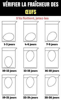 Vérifier la fraicheur des œufs