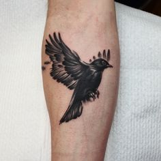 Black and grey crow tattoo by Jessica brandt