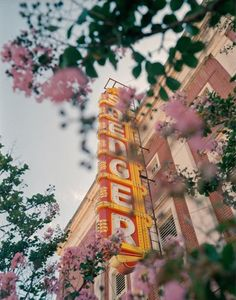 tree with pink flowers in front of brick building with vintage neon sign photographed by @arnaudmontagard via instagram. #instagram #photography #photograph #photo #neon #vintagesign #sign #nature #pinkblooms #pinkflowers #tree