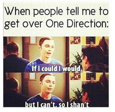 One Direction and The Big Bang Theory FTW haha so true though