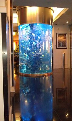 living room tank. this would be really cool if it went through multiple floors.