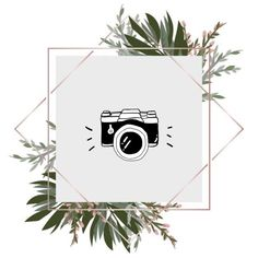 1 million+ Stunning Free Images to Use A. Instagram Nails, Instagram Design, Instagram Feed, Hight Light, Casa Anime, History Icon, Cute App, Rustic Logo, Instagram Background