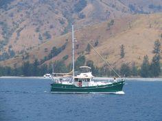 Diesel Duck Trawler Starbord side
