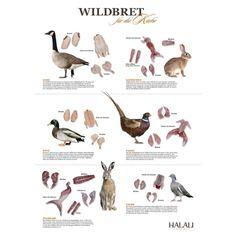 Wie bereitet man Wild zu? Und wie heißen die küchenfertigen Teile. Das große Poster vom Halali-Magazin.   Klüngelkram