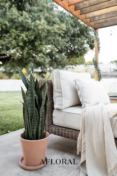 Spruce up your outdoor patio space this season with a tall, faux outdoor snake plant. No maintenance required! Plant in your favorite terracotta pot and enjoy the views. Shop trending outdoor artificial plants at Afloral.com. Fake Plants, Artificial Plants, Hanging Plants, Potted Plants, Nandina Plant, Patio Decorating Ideas On A Budget, Patio Ideas, Garden Ideas, Decor Ideas