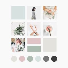 About the Design Studio — Function Creative Co. Colour Pallette, Colour Schemes, Color Psychology, Photoshop, Color Inspiration, Moodboard Inspiration, Creative Studio, Mood Boards, Instagram Feed