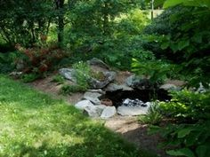 "Good story of an Ohio permaculture water garden, with ""stacking functions"" or directing the natural flow of water both over rock, and through permeable sand and pebbles for natural filtration, creating a broad wetland as well as pocket ponds."