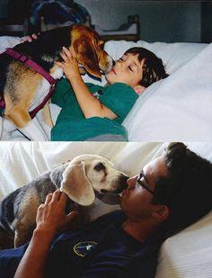 犬を飼うべき理由31