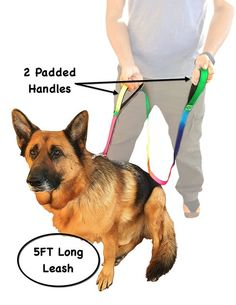 Dogs Leash - Bright Rainbow Color - Dogs Supplies for Large Dog - 2 Handles 1 Leash Dog Training - 8ft Long or 6ft Long Super Tough - Handle Padded * You can get additional details at the image link.