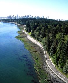 Time for a Stanley Park seawall walk. it just is.