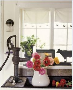 I want an old water pump in my house one  day!! Gerber Daisies