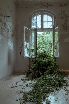 Art Exhibition in Beelitz Sanatorium ~ Berlin