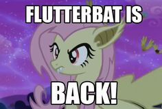 Fluttershy, Mlp, Rarity And Spike, My Little Pony Friendship, Twilight Sparkle, Rainbow Dash, Madness, Nostalgia, Cartoons