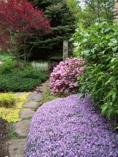 Jan's garden in Ohio--Click through to read more about this garden!