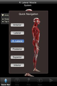 iMuscle Review by Lisa Caplan for 148apps - an amazing app to track almost all levels of PT and rehab