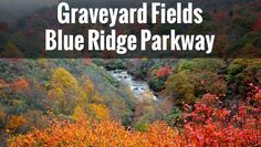 Graveyard Fields Guide - One of our favorite places to visit on the Parkway - Swimming, creeks, waterfalls, hiking, scenery, you name it.