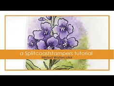 An online community for art stampers and scrapbookers Pen And Watercolor, Watercolor Background, Watercolor Pencils, Watercolours, Card Making Tutorials, Card Making Techniques, Split Coast Stampers, Altenew Cards, Colouring Techniques