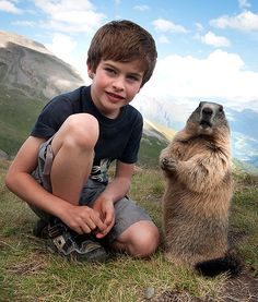 Te Marmot whisperer: True! This kids attracts marmots who trust him and remember him with every return to the alps. Marmots do NOT do this with humans.