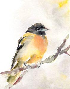 Oriole Bird Watercolor Painting Art Print, Yellow Bird Watercolour Wall Art