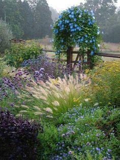 rustic garden, morning mist