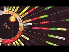This Video Will Get You Pumped on Data Visualization (and Even Spreadsheets)