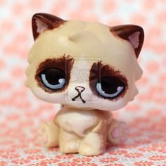 Grumpy Cat inspired LPS custom by pia-chu on DeviantArt