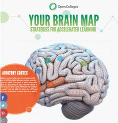 Open Colleges interactive brain map < 84 strategies for accelerated learning: shows you how the brain functions and ways to improve your learning Brain Gym, Your Brain, College Presents, Brain Mapping, Ap Psychology, Adhd Strategies, Training And Development, Speech Pathology, Middle School Science