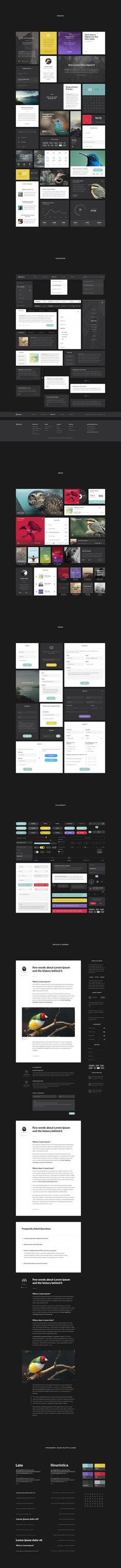 Aves-ui-all-elements... #grafica #web