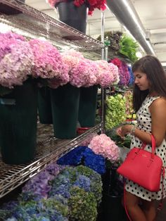 New York Flower District  Simply Margaret Palmer