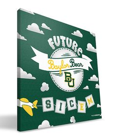 """Future Baylor Bear"" plane, aviation themed wall art"