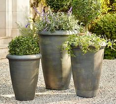 A set of three will set you up for life! Beautiful. Exbury Planters #potterybarn