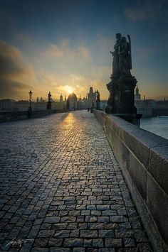 --Good Morning Charles-- by Marek Kijevský on 500px