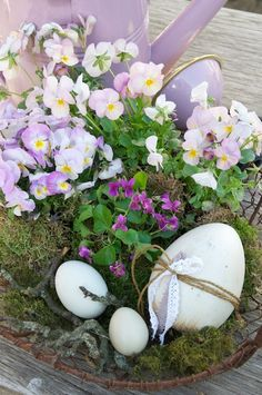 Easter flower dispay ... live pansy and violas in a basket with moss and natural eggs ...