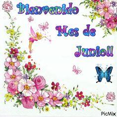 BIENVENIDO MES DE JUNIO