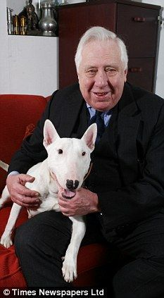 Image result for famous owners of bull terriers