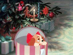 La Belle et le Clochard est disponible en DVD et Blu-Ray. © Disney  #LaBelle #LeClochard