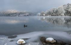 Popular on 500px : Peaceful Lake Bohinj by angelainokchong