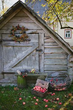 Love the little gray barn.  Fall feeling and inspiration.