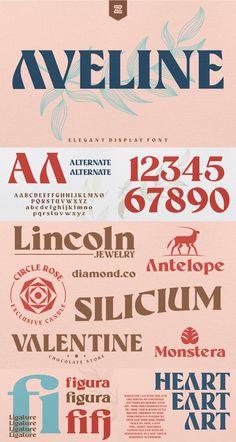 Modern Serif Fonts, Sans Serif Fonts, Script Fonts, Photoshop Illustrator, Adobe Photoshop, Chocolate Stores, Font Packs, Font Combinations, Wedding Fonts