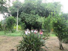 """Gracias a los estudiantes de quinto grado, docentes y padres de familia del Colegio Liceo Francés de la ciudad de Pereira, por su visita al Paraíso del Bambú y la guadua, en donde por primera vez tenemos la oportunidad de recibir niños para sensibilizarlos con la naturaleza y enseñarles los beneficios que ofrece la guadua. Durante el recorrido de """"Nuestra amiga la guadua"""" los estudiantes pudieron hacer manualidades , recibir capacitación por parte de una experta y recrearse"""