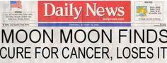 Oh, Moon Moon