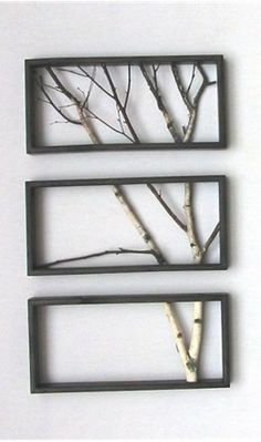 sweetkitty: DIY - Tree Branch Art