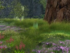 Tranquil (Second Life)