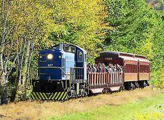 MOUNT TREMPER >> The Catskill Mountain Railroad will resume scenic train service in the Mount Tremper-Phoenicia area on Saturday.