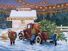 ~Bringing home the Christmas tree~