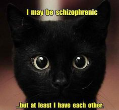 I may be schizophrenic but at least I have each other.