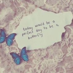 today would be a perfect day to be a butterfly